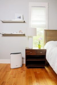 Winix P150 Air Purifier: Trusted Review & Specs