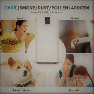 Inofia PM1608 Air Purifier: Trusted Review & Specs