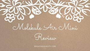 Molekule Air Mini Air Purifier: Trusted Review & Specs